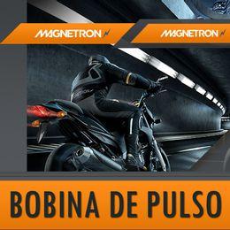 Bobina-de-Pulso-Titan-1992-ate-1999---Magnetrom