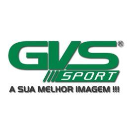 Retrovisor-GVS
