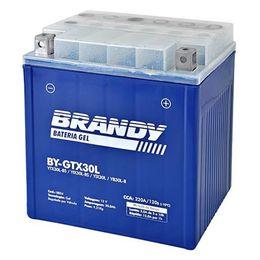 Bateria-YTX30L-BS-BY-GTX30L