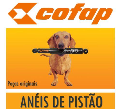 Aneis-de-Pistao-Titan-150-100---Cofap