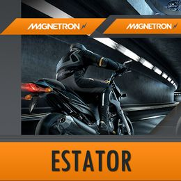 Estator-Twister---Tornado-250---Magnetrom