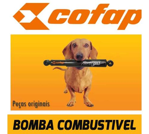bomba-combustivel